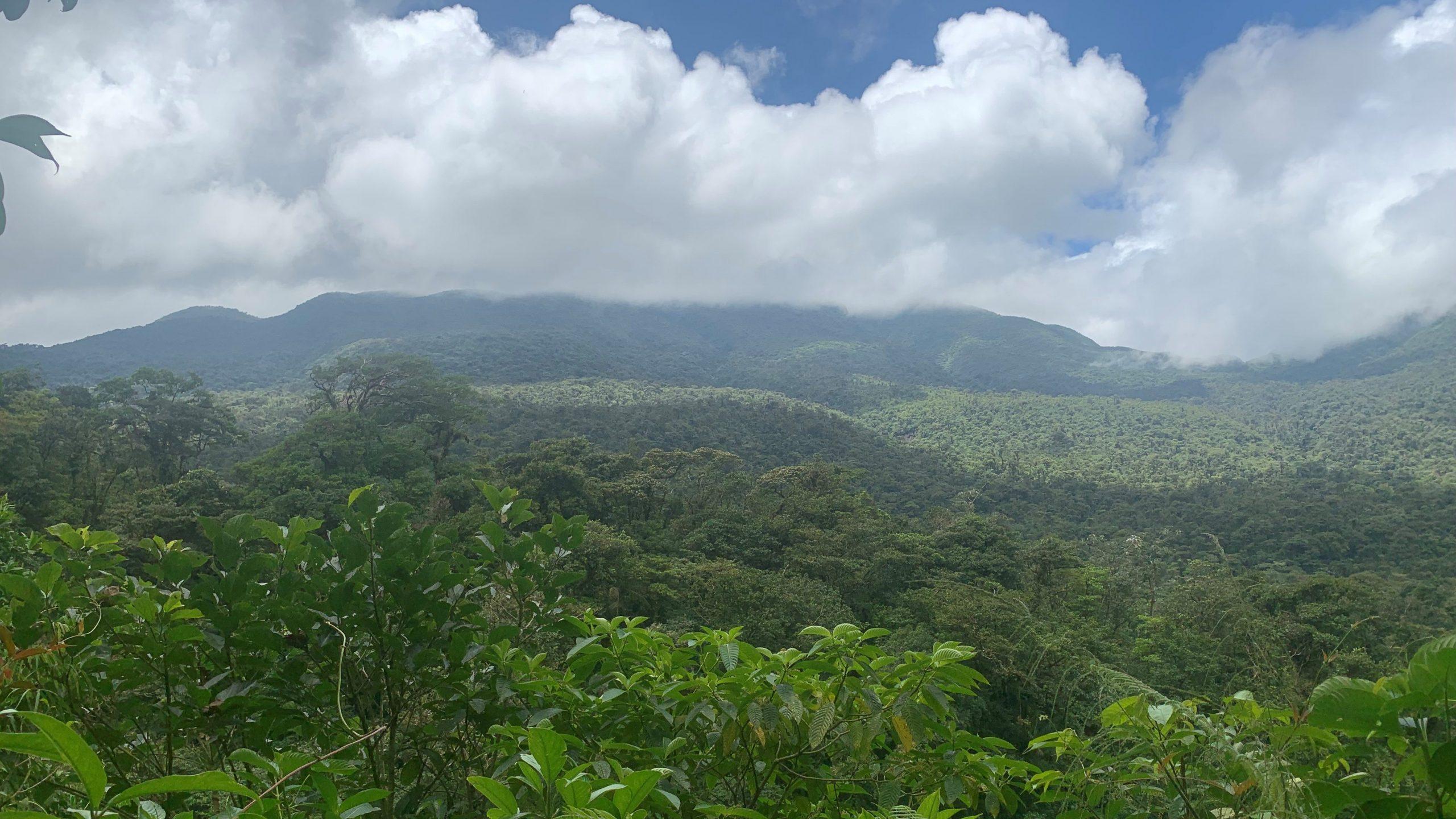 Tenorio Volcano Lookout